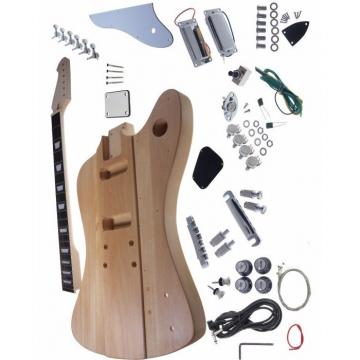 Custom Built Unfinished Les Paul Firebird Guitar Kit