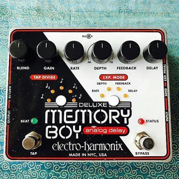 Custom Electro Harmonix  Deluxe Memory Boy