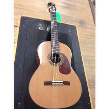 Custom Sunlite  Nylon Acoustic