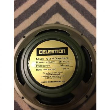"Custom Celestion G12M Greenback 12"" 16 Ohm"