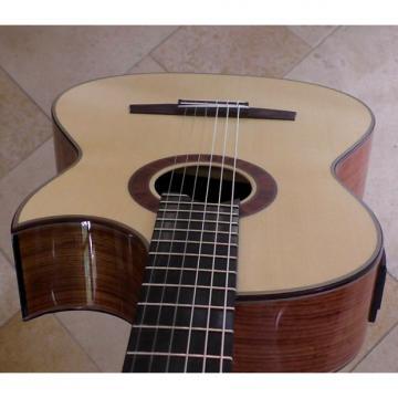 Custom Hanika Cut Pro spruce top electric crossover guitar