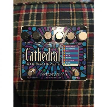Custom electro harmonix  cathedral stereo reverb