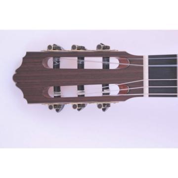 Custom Shop Fan Fretted Acoustic Guitar AG100