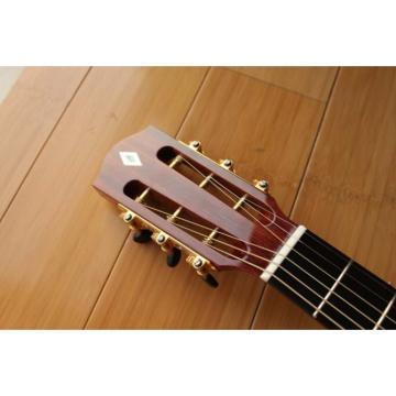 Custom Shop Fan Fretted Acoustic Guitar AG300