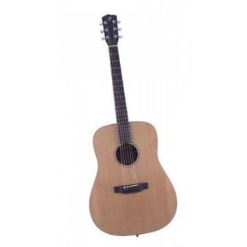 Breedlove Model Passport D/SM Acoustic Guitar With Gigbag