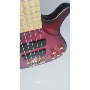 Custom Shop 5 String Bass Purple Gold Hardware Maple Fretboard Strinberg