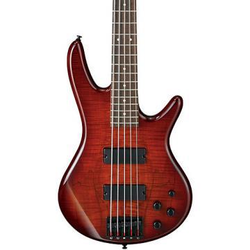 Ibanez GSR205SM 5-String Electric Bass Charcoal Brown Burst Rosewood fretboard