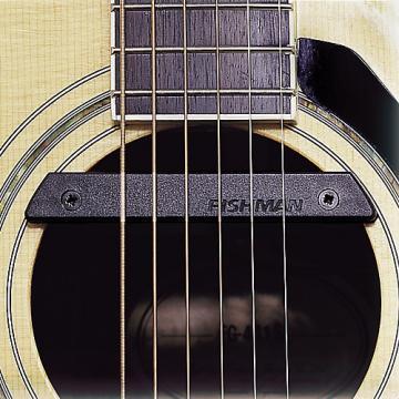 Fishman Rare Earth Single-Coil Soundhole Guitar Pickup
