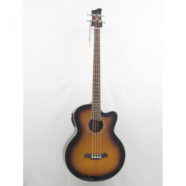 Jay Turser Model JTAB-650ATB Acoustic Bass Guitar #1 image