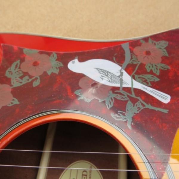 Custom Shop Dove Hummingbird Sunburst Acoustic Guitar J200 #4 image