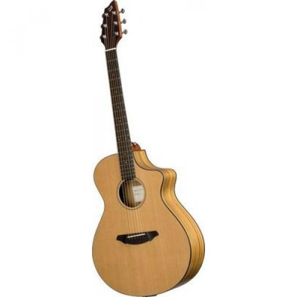 Breedlove Model Passport C250/COE Acoustic Electric Guitar WITH Gigbag #1 image