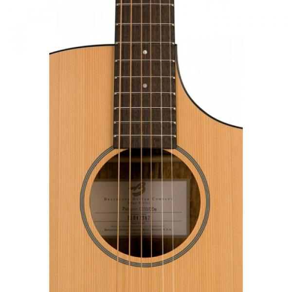 Breedlove Model Passport C250/COE Acoustic Electric Guitar WITH Gigbag #4 image