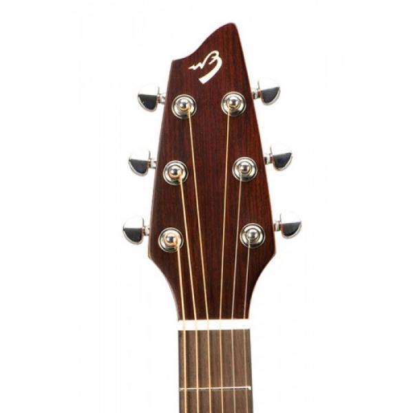 Breedlove Model Passport C250/COE Acoustic Electric Guitar WITH Gigbag #5 image