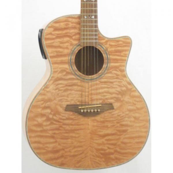 Hohner Grand Auditorium Model ACcoutic Electric Cutaway Guitar #4 image
